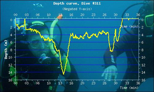 Dive Profile 2