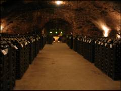 View of a very impressive sect cellar in the town of Sommerhausen. I want to have something like this ;-)