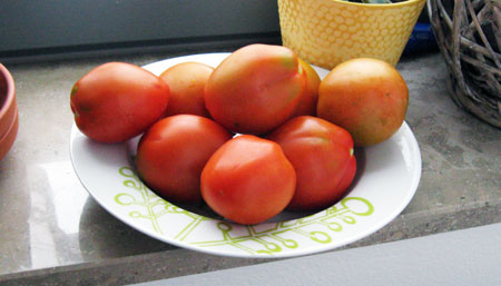 Our own homegrown tomatoes